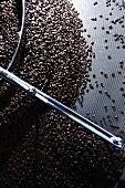 Geröstete Kaffeebohnen beim Auskühlen