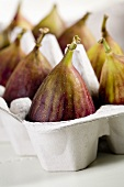 Figs in a Carton