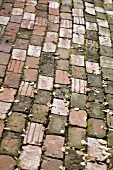 Brick Pathway; Outdoors