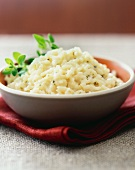 Risotto with fresh oregano