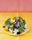 Spinach salad with edible flowers and nuts
