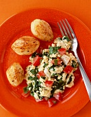Spinach Ricotta Scrambled Eggs with Tomato; On a Red Plate; From Above