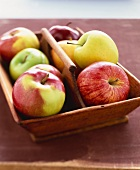 Assorted Apples in a Wooden Bowl