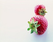 Two Whole Strawberries; Close Up
