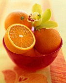 Half and Whole Oranges in a Bowl with an Orchid