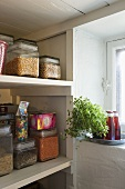 Storage jars on a shelf and herb pots with Campari bottles on a tray in a window niche