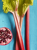 Three sticks of rhubarb and half a pomegranate against a blue background