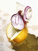 Different kinds of onions