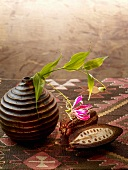 Cocoa pod with vase on carpet