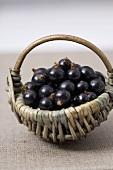 Blackcurrants in a small wicker basket
