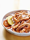Cooked prawns with lemon slices and ice cubes