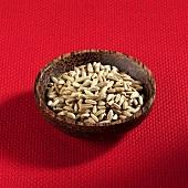Grains of rye in wooden bowl