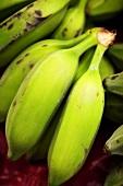 Small green bananas