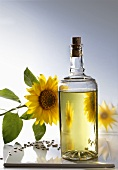 Sunflower oil, sunflowers and seeds
