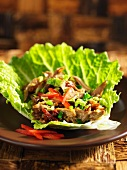 Duck with hoisin sauce in a lettuce leaf