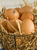 Brown organic eggs in a wire basket