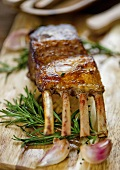 A grilled rack of lamb with rosemary and garlic
