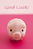 A lucky pink pig and the words Good Luck