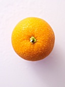 A freshly washed orange seen from above