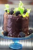 Cake with creme de cassis and blackberries