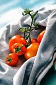 Tomaten auf Küchentuch