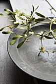 Sprig of mistletoe on an old plate