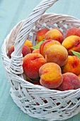 Lots of fresh peaches in a basket