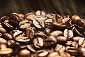 Aromatic coffee beans after roasting