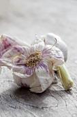Two garlic bulbs