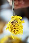 Tagliolini porcini mushroom ragout on a fork