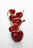 A row of cherries with water drops