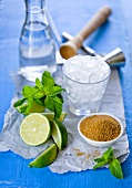 Ingredients for mojito (brown sugar, limes, mint, rum, crushed ice)
