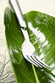 A fork on a leaf