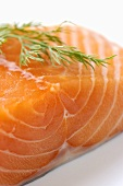 A salmon fillet with dill