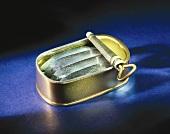 Four sardines in a tin