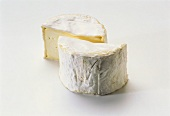 Chaource (soft cheese, Champagne, France)