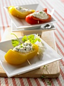 Pepper stuffed with herb quark