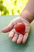 A strawberry in a child's hand