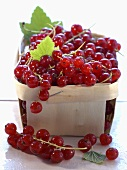 Redcurrants in a wooden basket