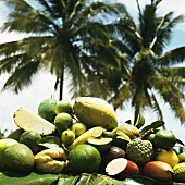 Exotic fruit in front of palm trees