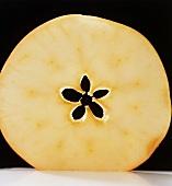 Ein Apfelscheibe vor schwarzem Hintergrund
