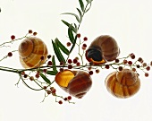 Snails and pink peppercorns