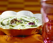 Yoghurt soup with basil