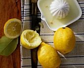 Lemons (Citrus limon); whole and squeezed