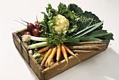 Fresh winter vegetables in wooden crate