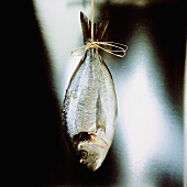 Fish hanging up