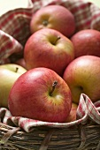 Fresh red apples in basket (close-up)