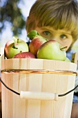 Child behind wooden bucket full of apples