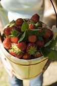 Woman holding wooden bucket full of fresh strawberries