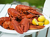 Lobsters with lemons on platter (USA)